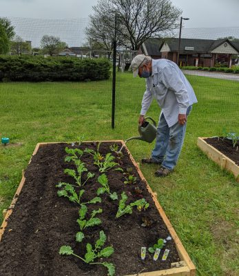 Watering the newly planted kale and Swiss chard plants in the Good News Garden at Holy Trinity Episcopal Church in Wyoming, Michigan